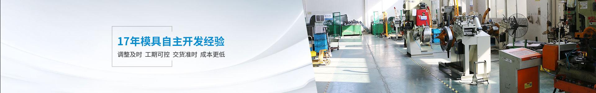 隆杰机电17年模具自主开发经验